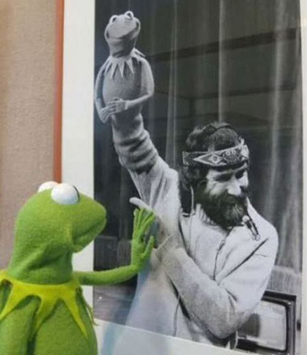 16 Heartwarming Pictures That Will Warm Your Heart - Kermit touching a photo of Jim Henson.