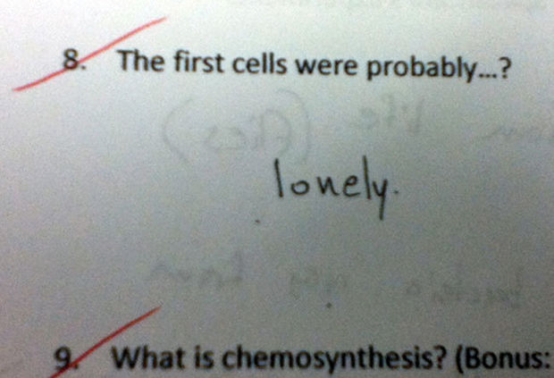 29 Funny Test Answers - The first cells were probably...?
