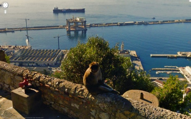 14 funny Google Street View images - A monkey chillin' on a ledge with a view overlooking the sea.