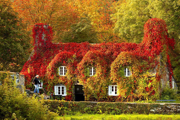 Fall colors at Tu Hwnt I'r Bont Tearoom - Llanrwst, North Wales.