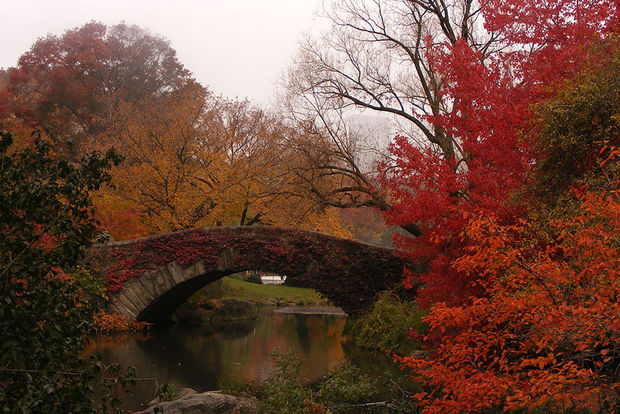 Fall colors at Gapstow Bridge - New York, USA.