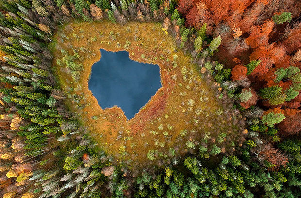 Fall colors at Forest Lake - Poland.