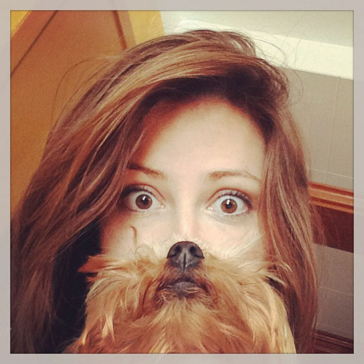 20 Funniest Dog and Cat Beards Ever - Good morning!