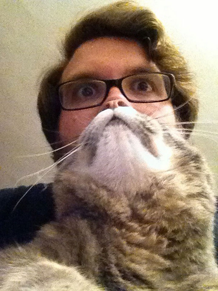 20 Funniest Dog and Cat Beards Ever - He needs a shave right meow.