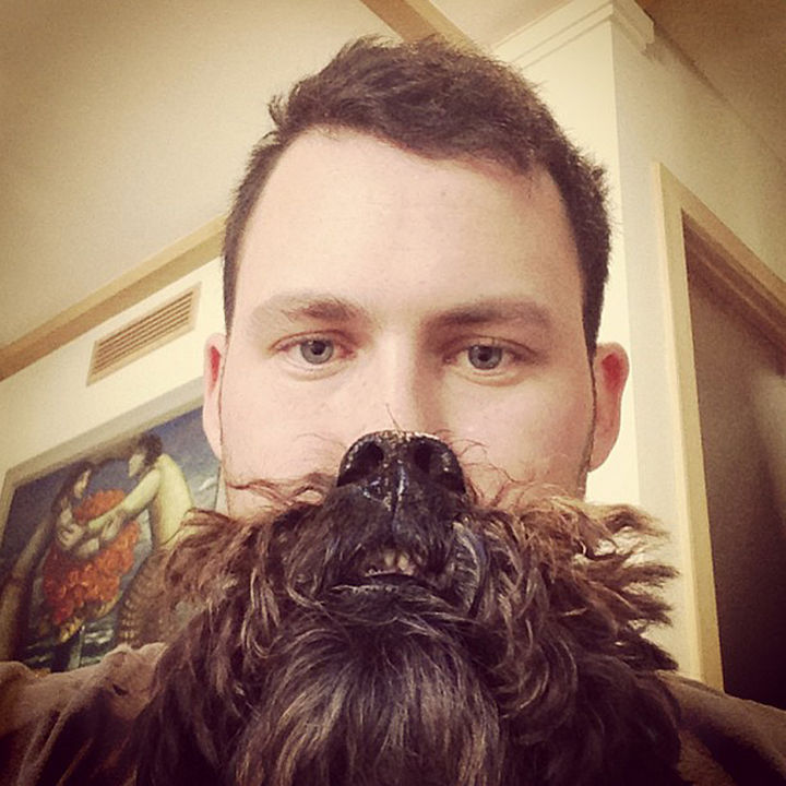 20 Funniest Dog and Cat Beards Ever - How a beard should look. Flowing and untamed!