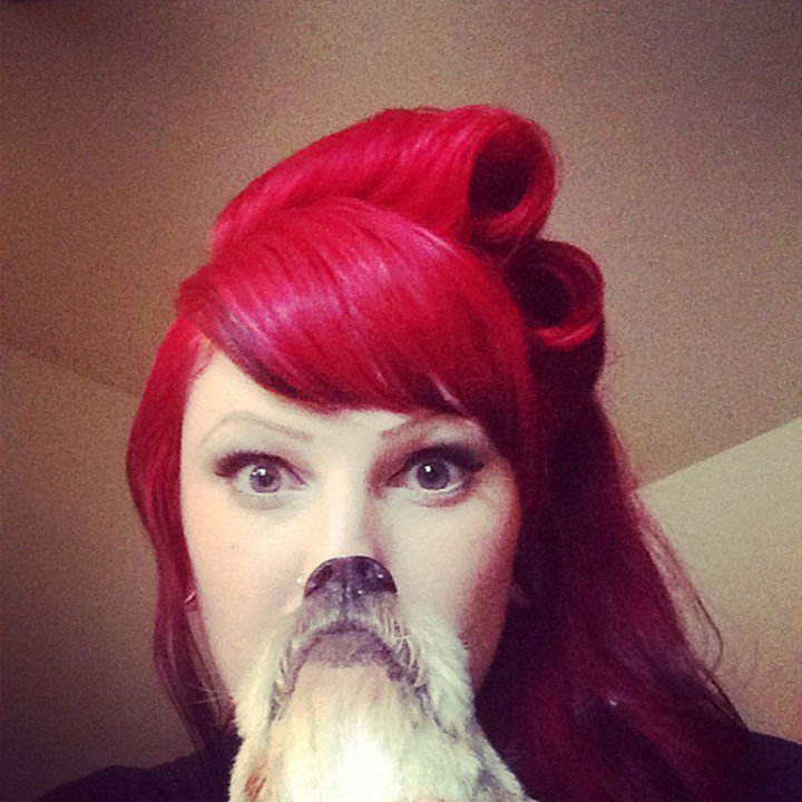 20 Funniest Dog and Cat Beards Ever - A perfectly manicured beard.