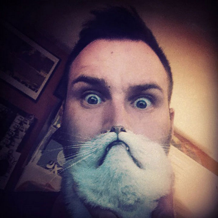 20 Funniest Dog and Cat Beards Ever - Catbeard with style.