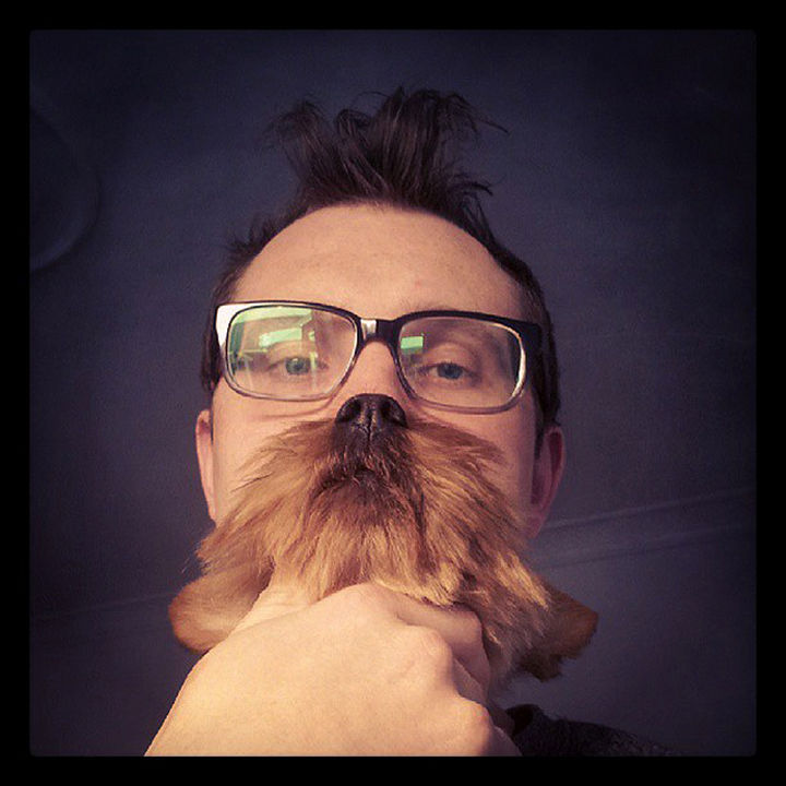 20 Funniest Dog and Cat Beards Ever - Sophistication all the way.