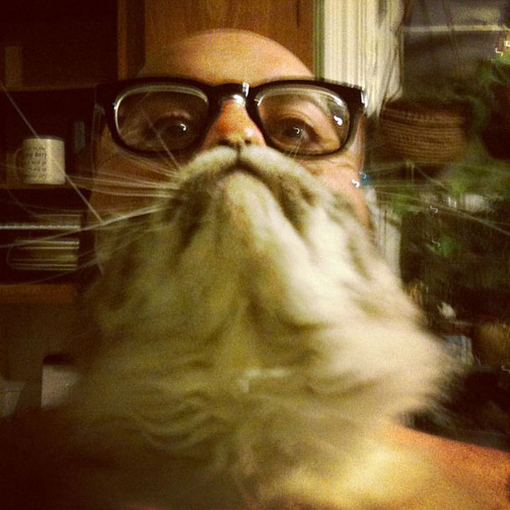 20 Funniest Dog and Cat Beards Ever - Just chillin'.