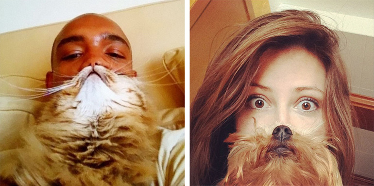 Here Are 20 of the Funniest Cat and Dog Beards Ever.