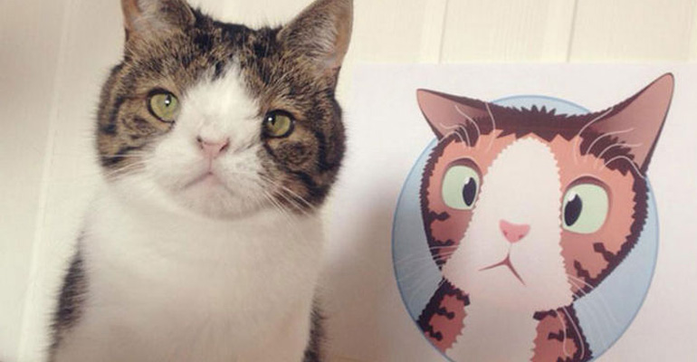 This Cat May Look Unusual but Monty the Cat Is Super Cute.