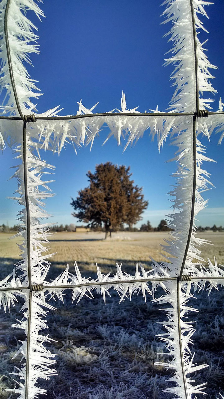 22 Ice and Snow Formations - Frost forming icicles on a metal fence.