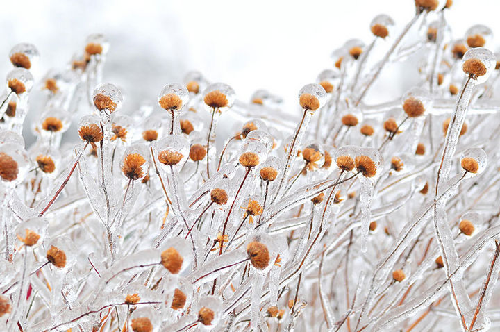 22 Ice and Snow Formations - Fudgesicles.