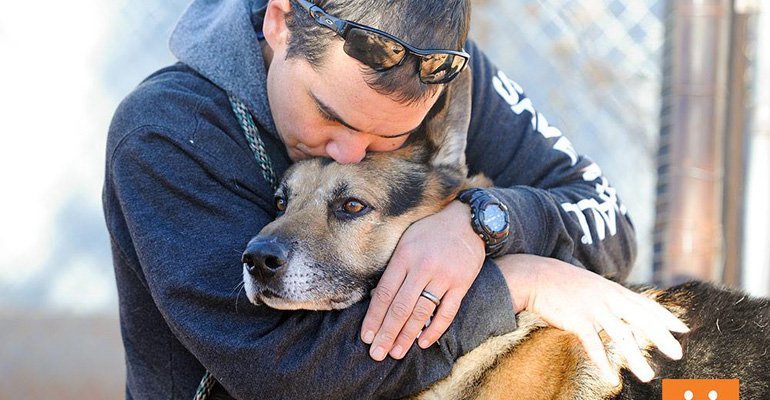 This Dog Was Supposed to Be Put to Death in His Late Owner's Will. Then, a Christmas Wish Came True…