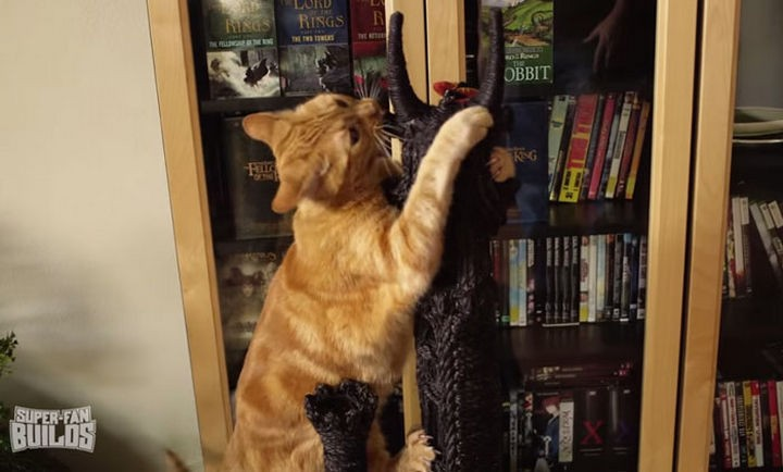 They definitely do like it with Frodo and Sam already climbing the scratching post.