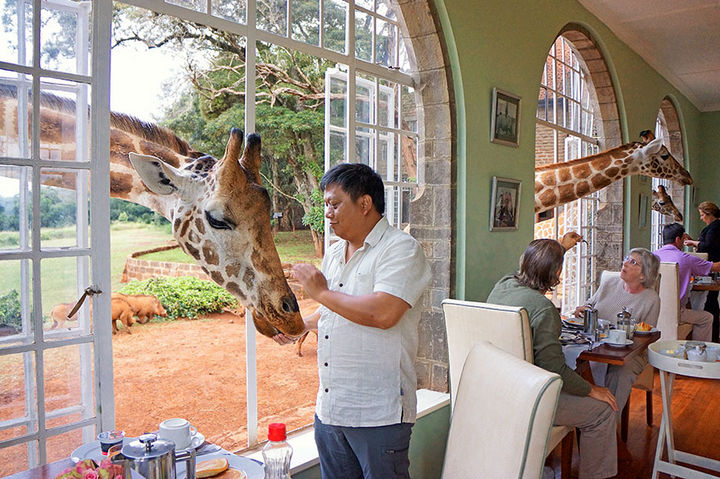 12 Amazingly Cool Hotels - Image 2 - Giraffe Manor, Kenya.