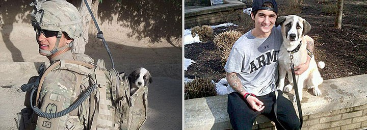 24 Before and After Photos of Pets and Their Humans - 5 month difference.
