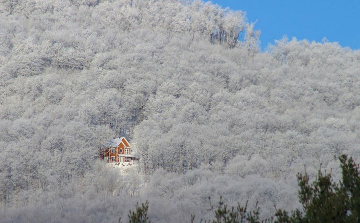 22 Cozy Houses in a Winter Paradise - A gorgeous house in a white forest.