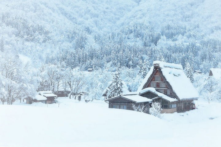 22 Cozy Houses in a Winter Paradise - A quiet village in the woods.