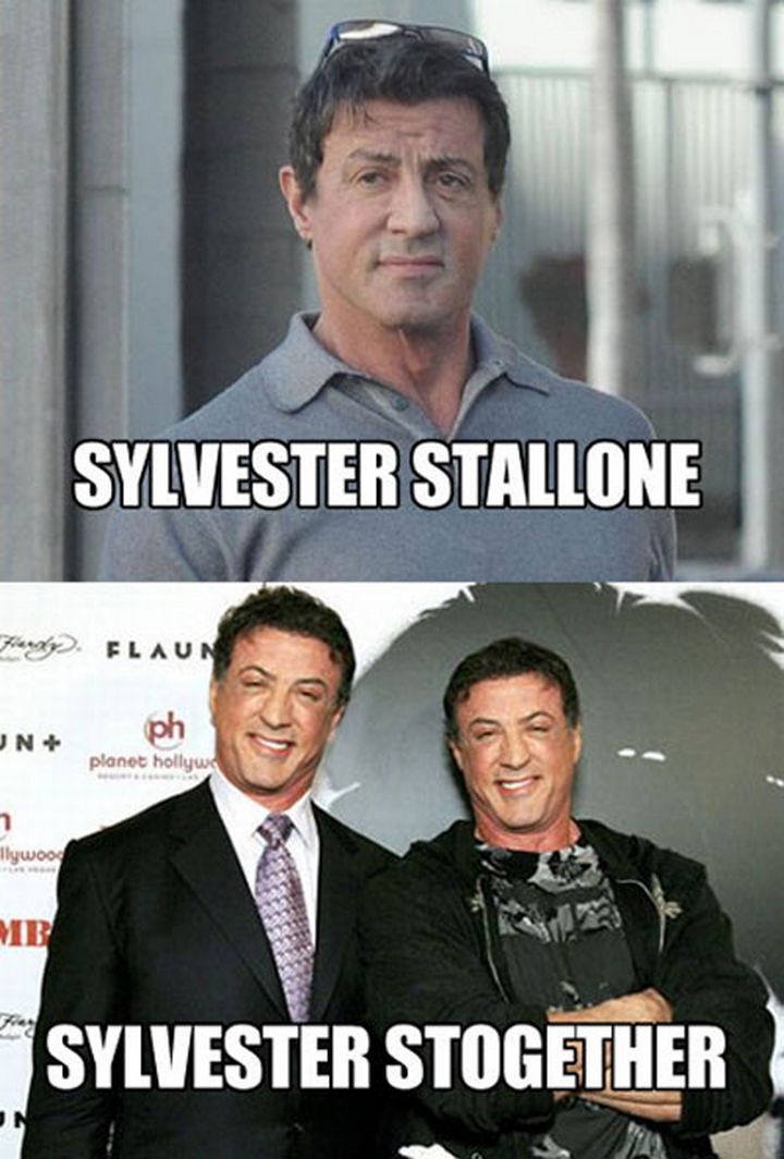 55 Hilariously Funny Celebrity Name Puns - Sylvester Stallone.