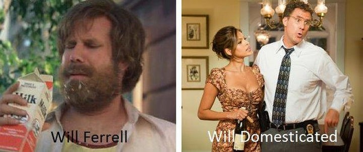 55 Hilariously Funny Celebrity Name Puns - Will Ferrell.