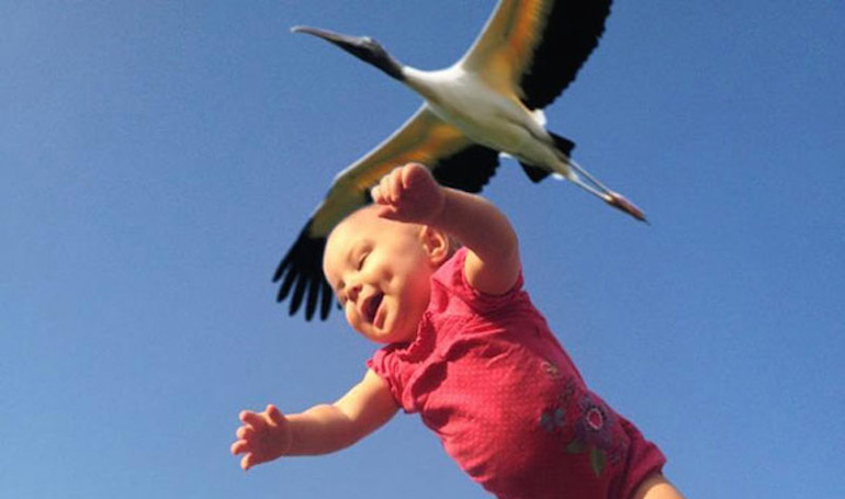 30 Perfectly Timed Photos That Will Make You Smile
