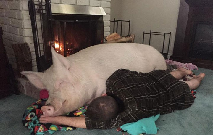 After playing in the snow, she loves to cuddle up by a warm and toasty fireplace.