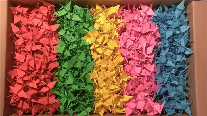 19 Photos Perfectionists Will Love - A perfect box of origami cranes.