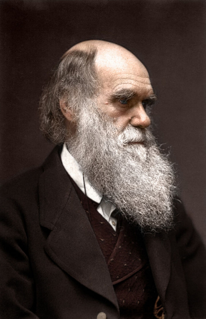 58 Colorized Photos from the Past - Charles Darwin.