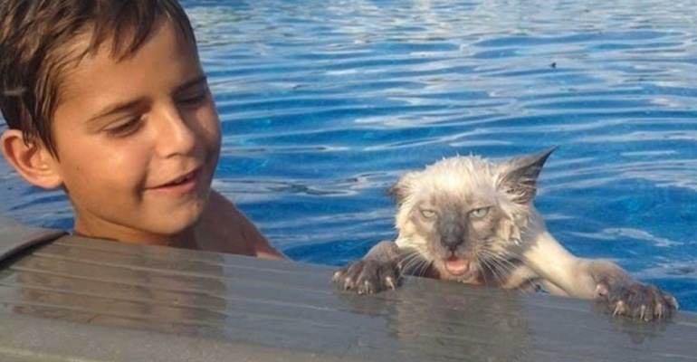 75 Incredibly Funny Pictures That Will Make You Smile. #30 Is Too Cute.