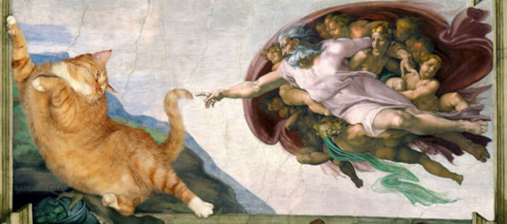 Fat Cat Photobombs Famous Paintings - The Creation of Adam, Michelangelo (1511-1512).
