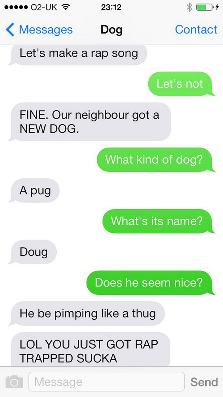 22 Hilarious Text Messages If Dogs Could Text - Rap king.