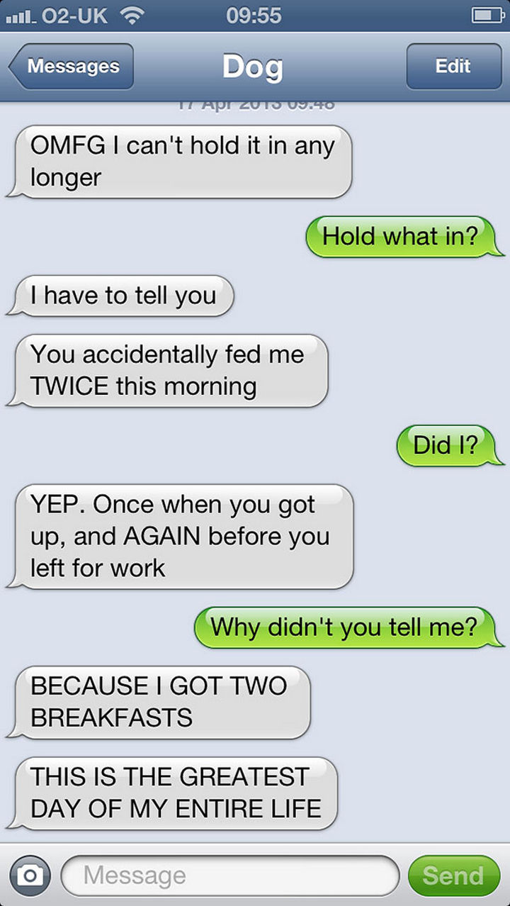 22 Hilarious Text Messages If Dogs Could Text - Two is better than one!