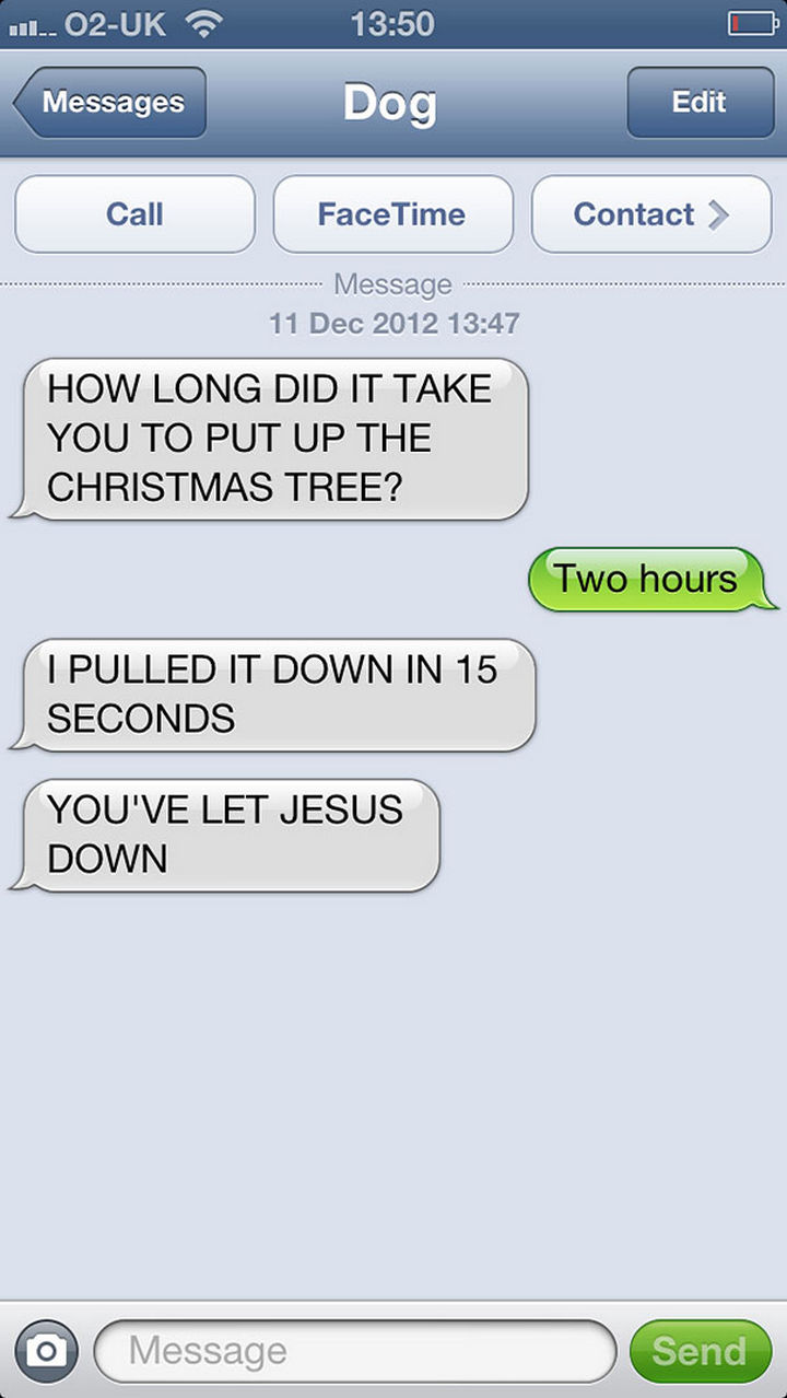 22 Hilarious Text Messages If Dogs Could Text - He let Jesus down.