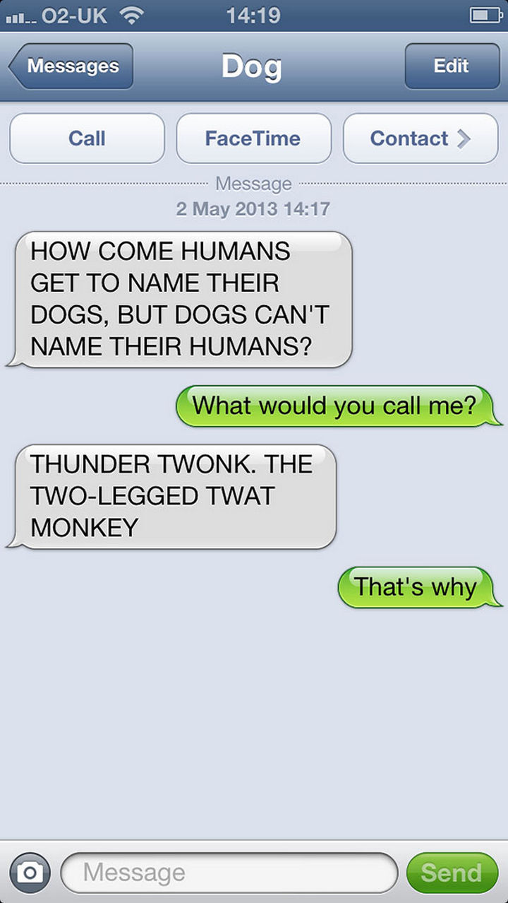 22 Hilarious Text Messages If Dogs Could Text - Not a good idea.