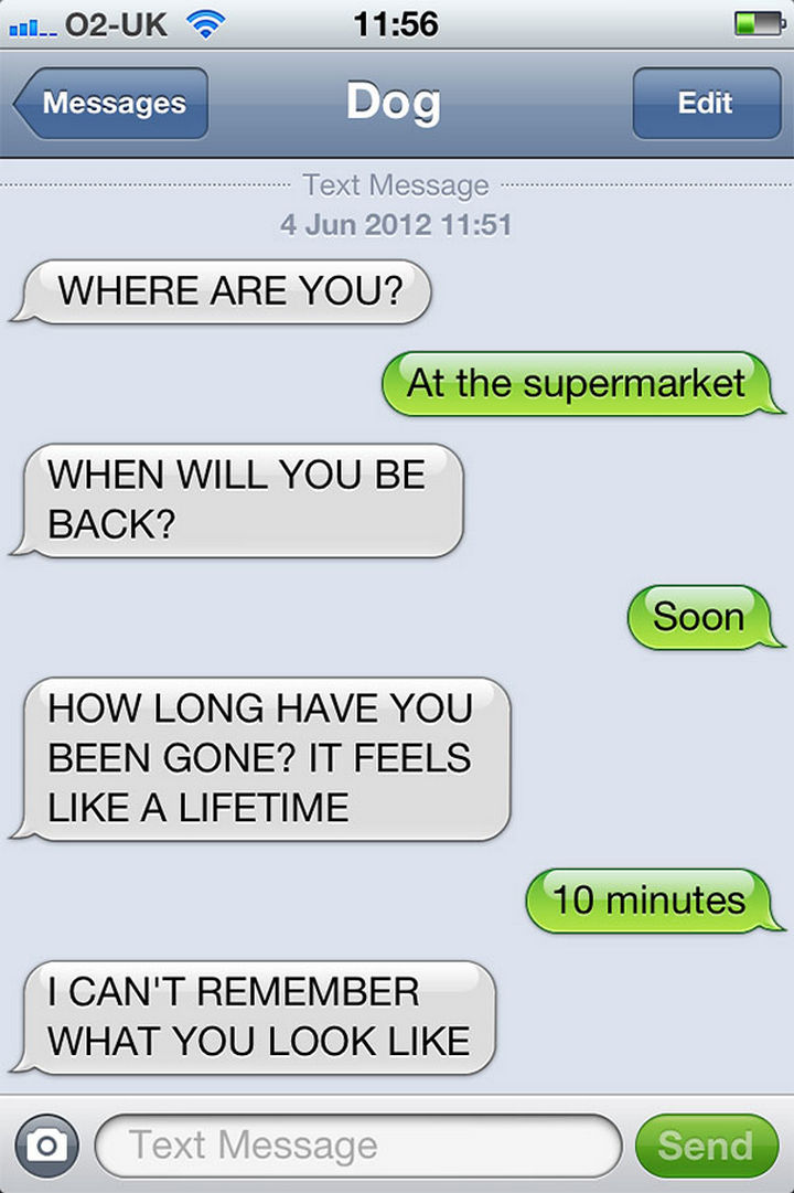 22 Hilarious Text Messages If Dogs Could Text - Dogs and the concept of time.
