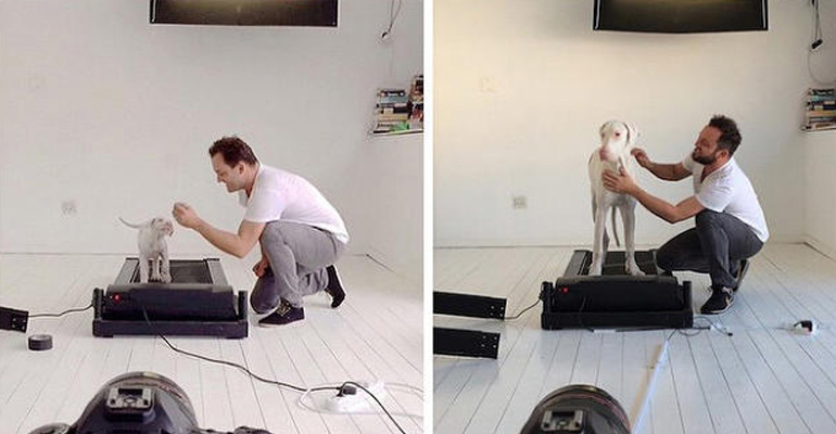 He Created a Time-Lapse Video of His Dog Growing up but the Reason Why Will Break Your Heart