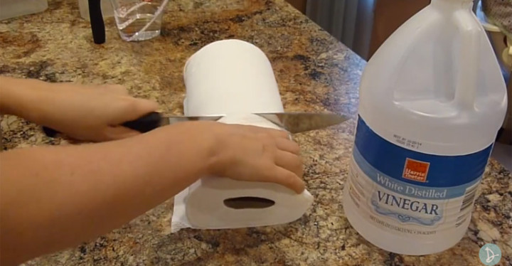DIY Kitchen Wipes with Paper Towels and Vinegar Makes Cents.