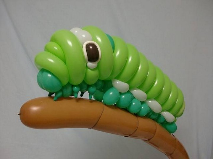 Balloon Caterpillar.