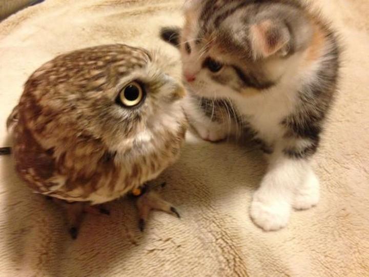 """Come here, a little closer..."""