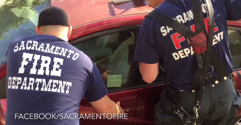 Sacramento Fire Department Rescues Dog in Scorching Hot Car.