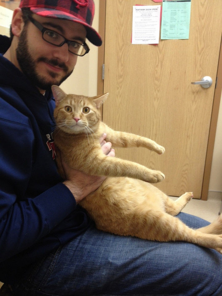 """28 Animals Going to the Vet - """"You lied to me human. This is not the PetSmart!"""""""