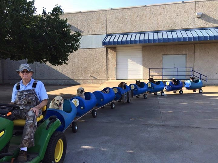 80-Year-Old Retiree Builds Dog Train for 9 Dogs He Rescued