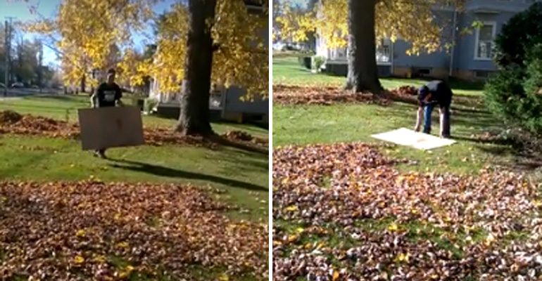 Man Rakes Leaves with a Piece of Cardboard and It's Brilliant.