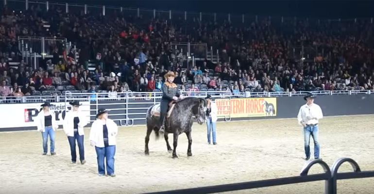Horse Wows the Crowds by Line Dancing to Billy Ray Cyrus' Country Hits.