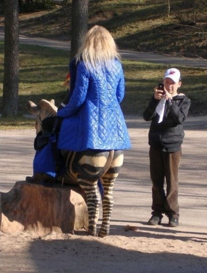31 Hilariously Misleading Photos - That is not a female zebra centaur.