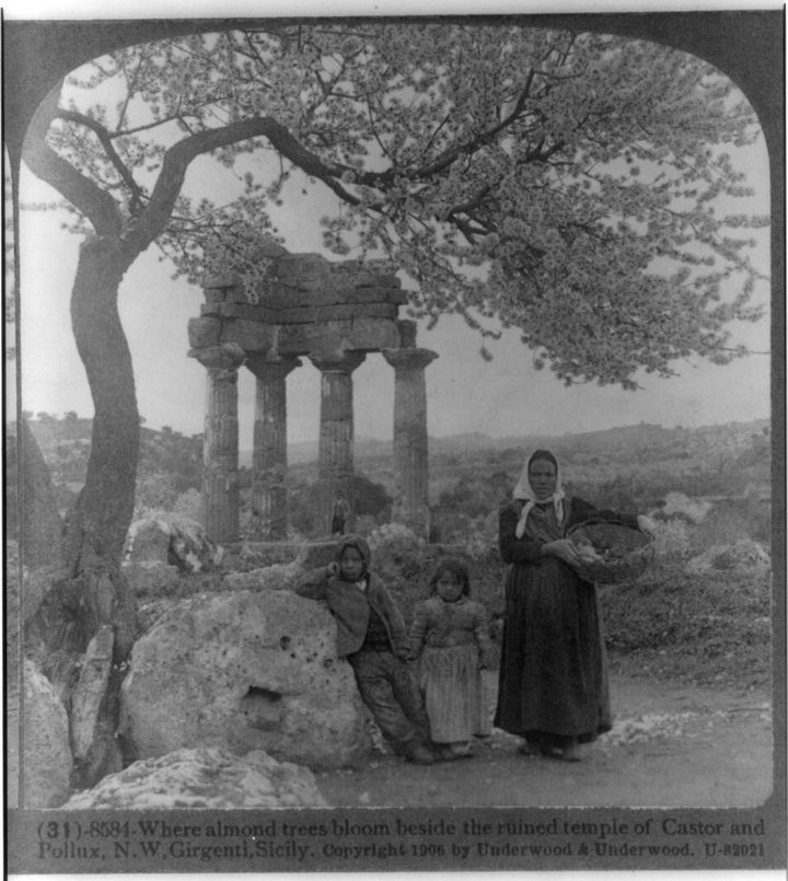 35 Rare Historical Photos - 1906: A family pictured underneath blooming almond trees beside the ruins of the temples of Castor and Pollux in the temples valley of Agrigento, Italy.