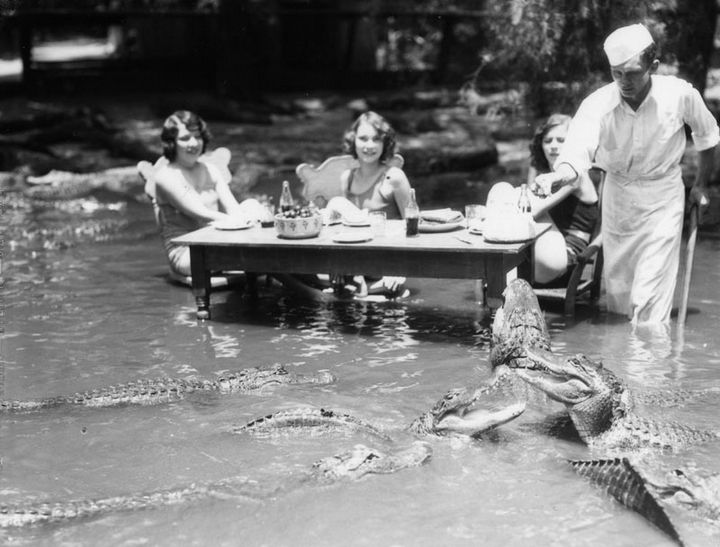 35 Rare Historical Photos - 1920: Three women dining with alligators at The California Alligator Farm in Los Angeles.