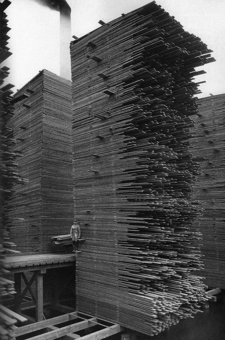35 Rare Historical Photos - 1919: Huge stacks of lumber drying in Seattle. How huge? Check out the man standing in the picture...
