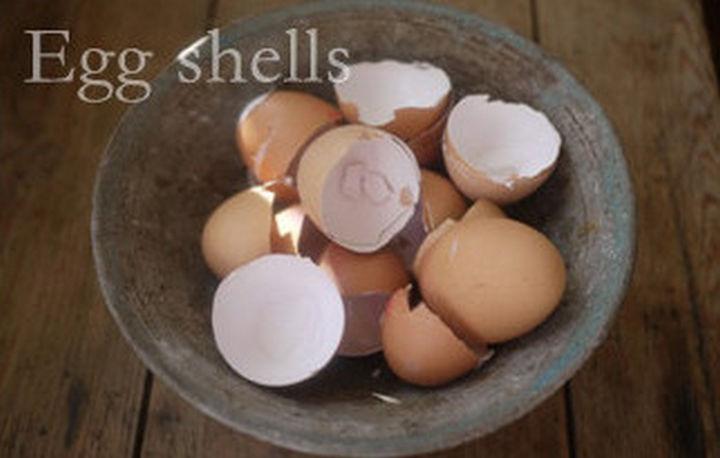 14 DIY Gardening Tips & Projects - Improve your garden soil egg shells.
